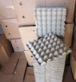 Коробки под яйца